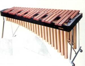 xylophone (1)